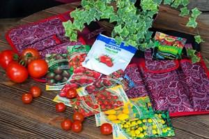 Семена томаты черри