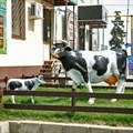 Большая фигура корова
