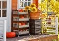 Деревянные ящики для хранения урожая
