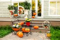 Цветочница уличная садовая - фото 39067