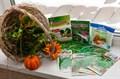 Набор семян зелень на подоконнике