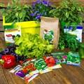 Подарочный набор семян